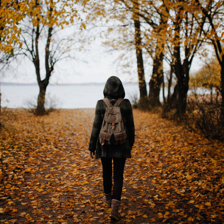 Jo's Journal: Get Outside and Take a Walk Today