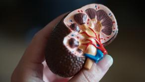 ISCHEMIA CKD: Devo revascularizar renais crônicos com isquemia moderada a importante? - ACC 2020