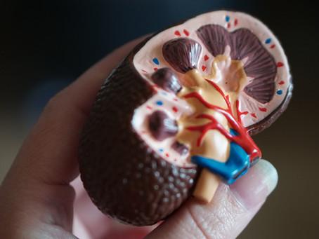 Kidney, Liver & Blood Test Offer