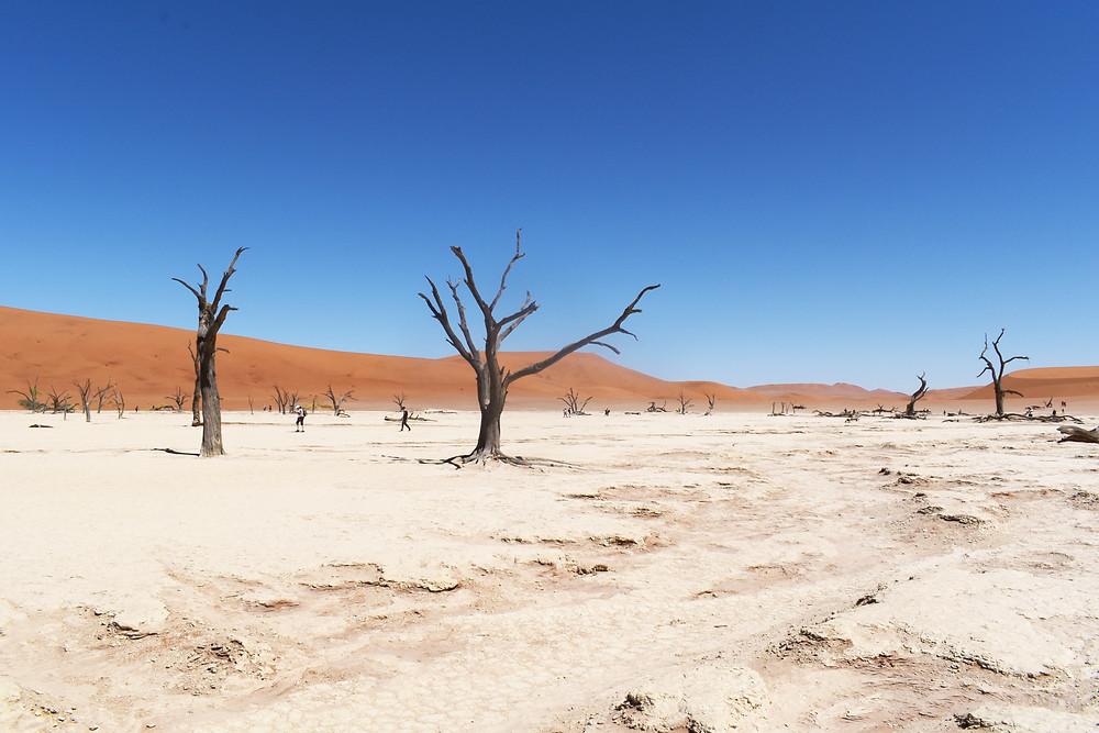 Namibie voyage