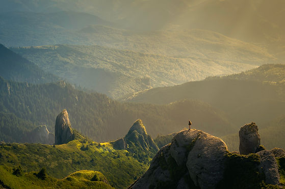 Image by David Marcu