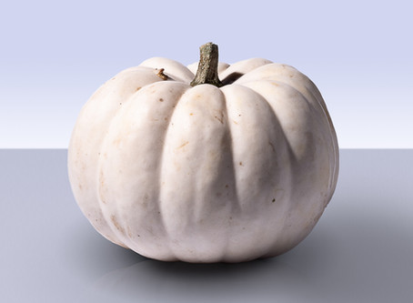 A New Fall Favorite: The White Pumpkin