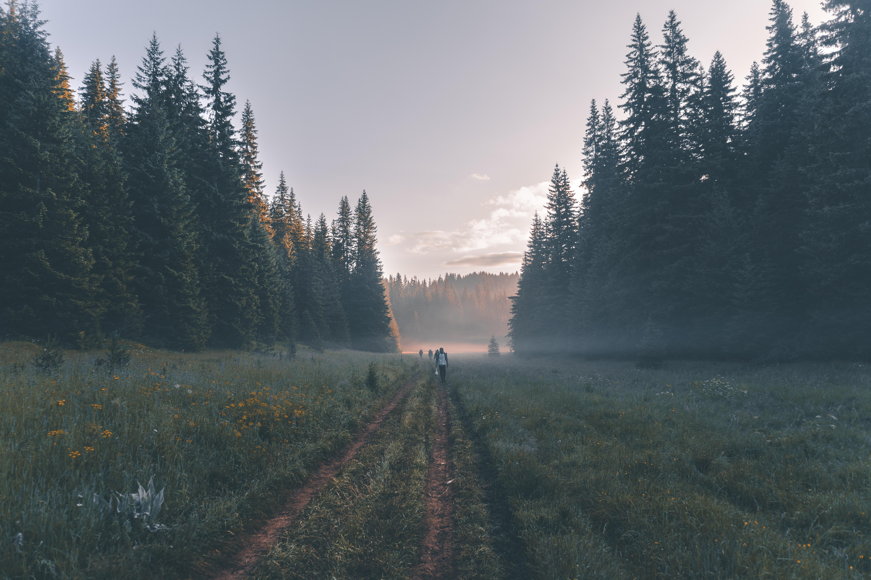 Image by Vasko Hristov