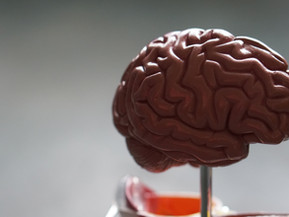 How to Help your Child's Brain Develop