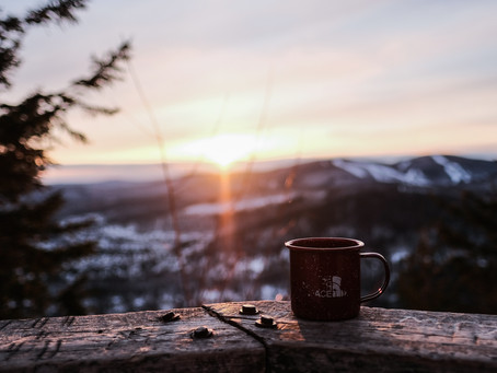 the coffee diaries