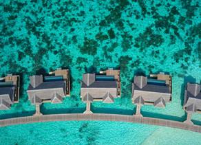 PADI pros in the Maldives love Aurora Wetsuits
