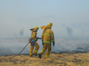 Wildland firefighter and risk of lung cancer and cardiovascular disease