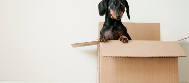 The 5 best things about moving