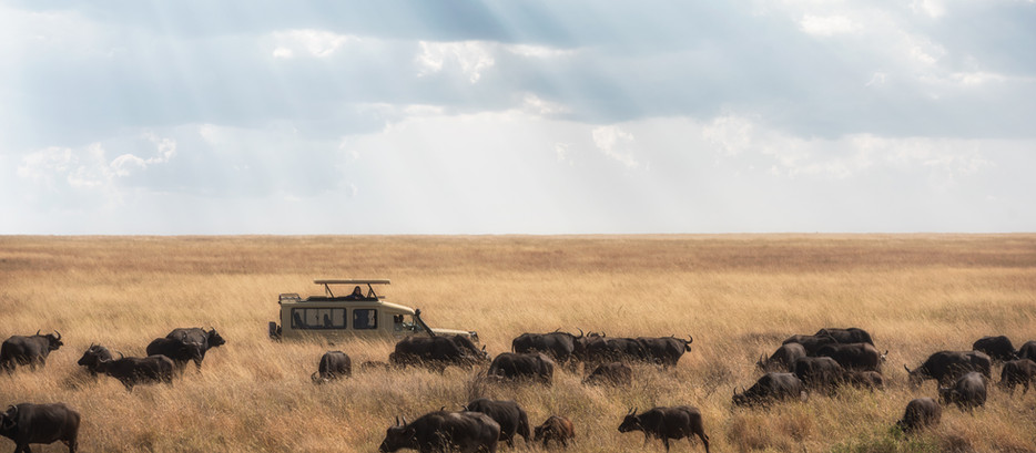 5 Epic Things Not To Miss In Tanzania