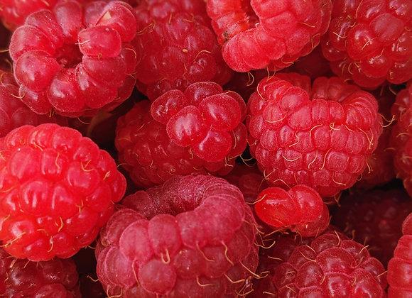 Yonder: Raspberry Gose