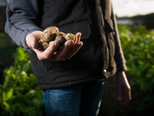 Growers Can't Ignore Expanding Compliance Burden
