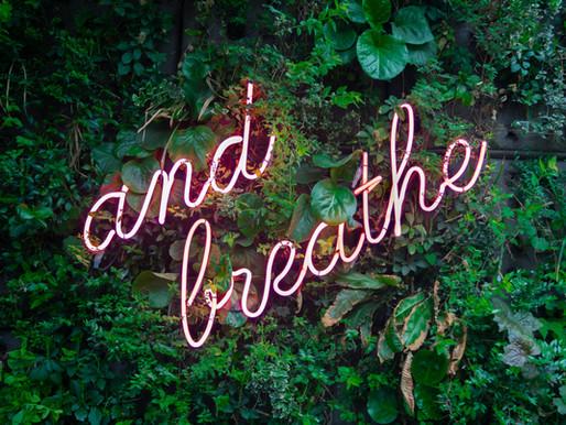 The Breath Of Life by Marli Reardon