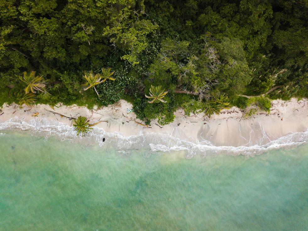 Plage tropicale, photo de Berti Benbanaste