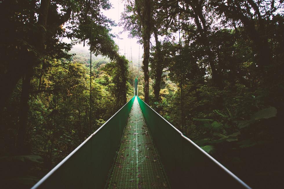 Pont suspendu, photo de Ben Ostrower