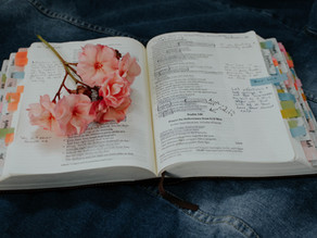 ¿Tienes un método para estudiar la Biblia?