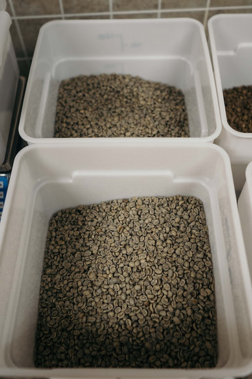 Organic green lentils (100g)