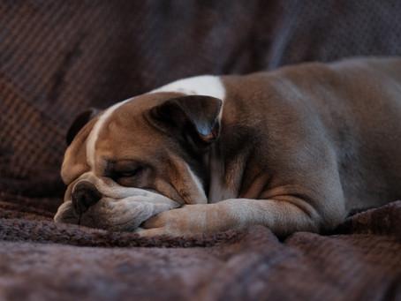 Moderate Sleep