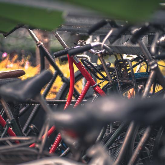 De Grote Versnelling doet fietsbeleid in Vlaanderen versnelling hoger trappen