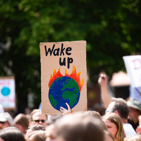 Climate Emergency Action Plan