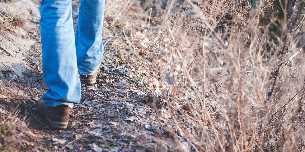 Welshpool Walk and Talk