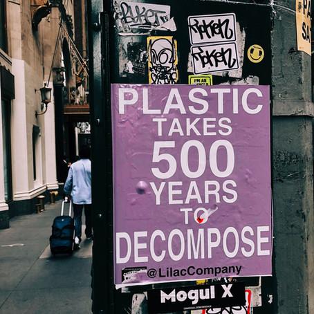 Plastic Bag Free NY....Get Ready!