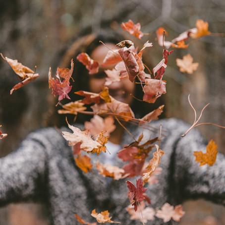 25 ideias de artigos para o Outono