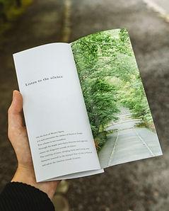 Flyer, Handout, Print
