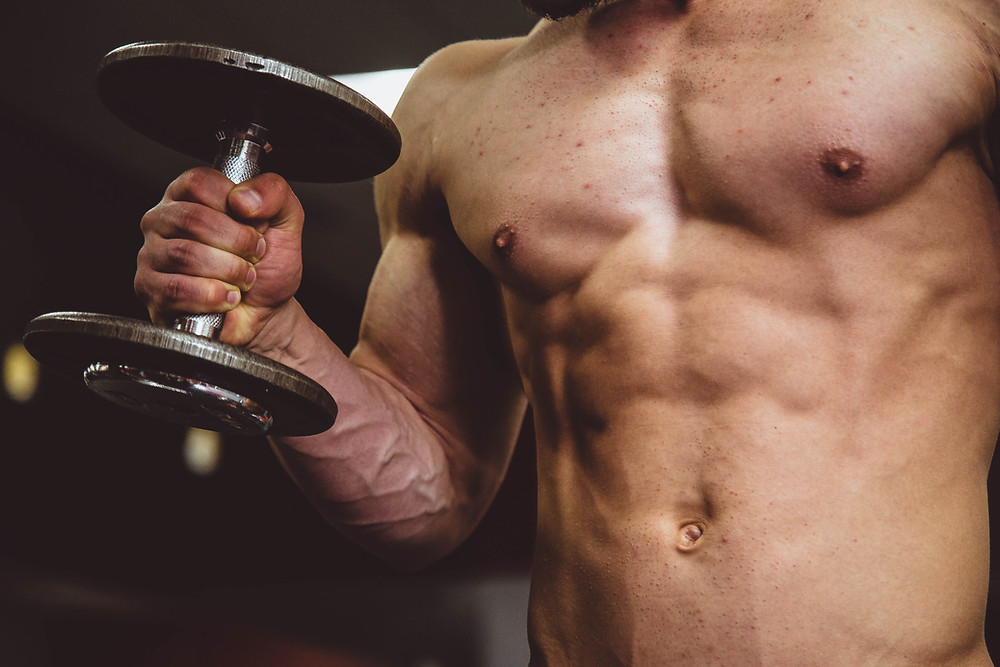 weight training supports fat loss