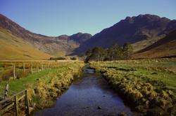Farm stream