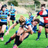 When Fair Competition Ends: Males in Female Sports