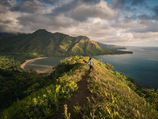 Quick Guide: Which Hawaiian Island is Right for You?