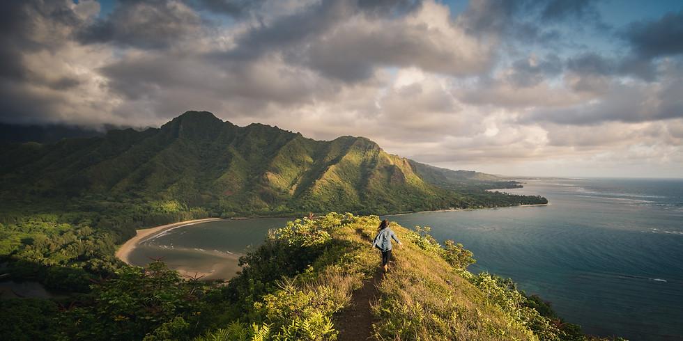 The Hawaiian Mission