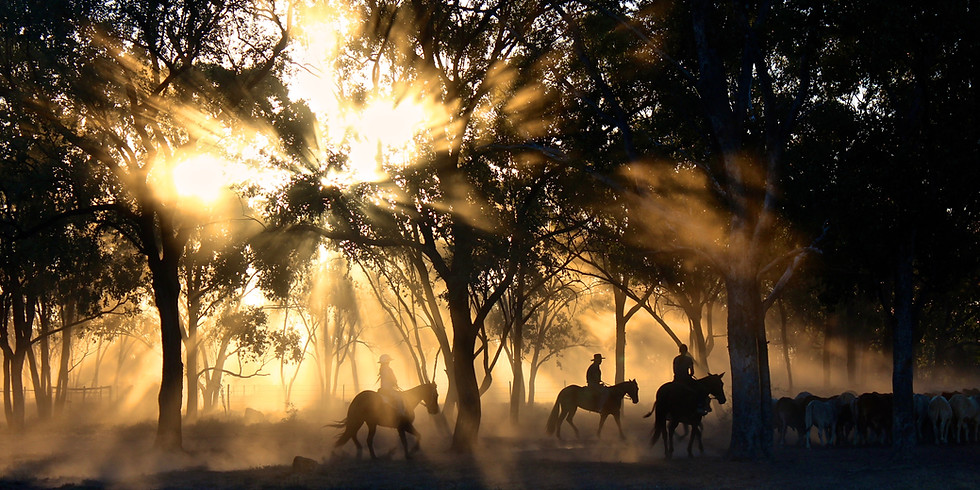 Warrior Wellness Trail Ride to Benefit Operation Warrior Horse