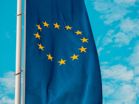 Joint Call for Extraordinary and Urgent Support to the European Flower and Live Plants Sector