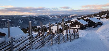 Image by Arvid Høidahl