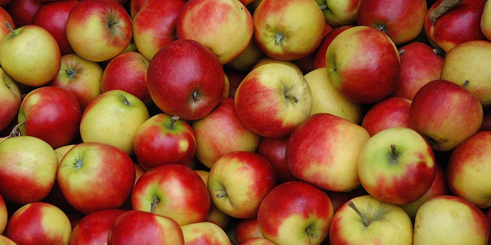 Apple Crisp Work bee