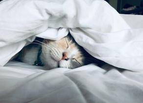 GET THE RESTFUL SLEEP YOU DESERVE