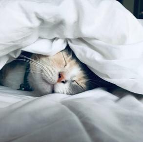 Sleep Hygiene: What is it?