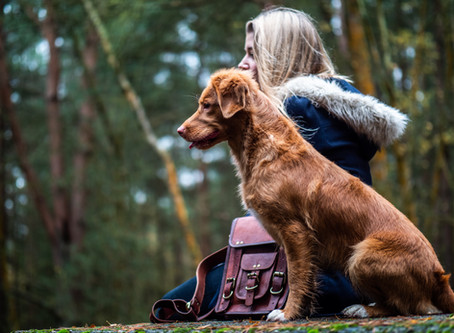 Emotional Intelligence & Reactive Dogs