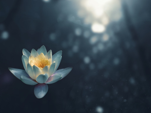 Q: Help! I'm bad at meditating! Any suggestions?