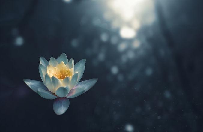 Meditation common questions