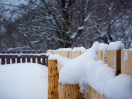 Essential Maintenance Tips for your Wood Fence