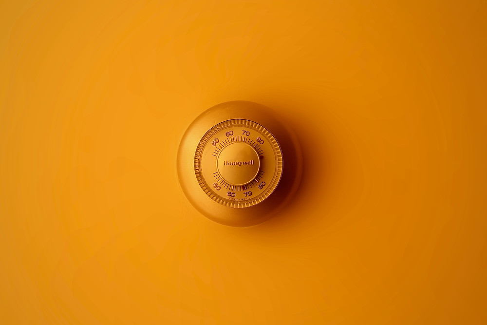 Safeguard Your Home at Mustard Seed Sentinel