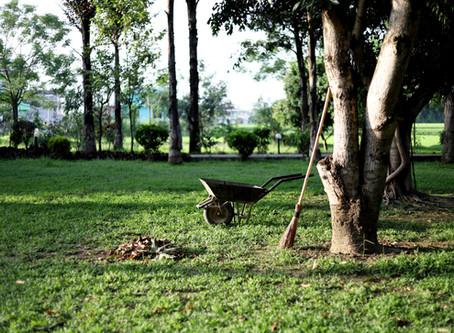 Feng Shui Outdoors:  Springtime