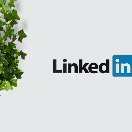 The Power of LinkedIn for Entry-Level Engineers