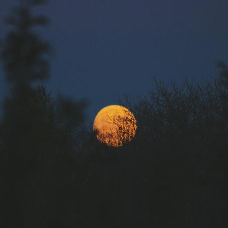 Shadow Maribrengaël 蠍座満月への約束 -自分に正直に-