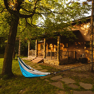 Cottage with a hammock