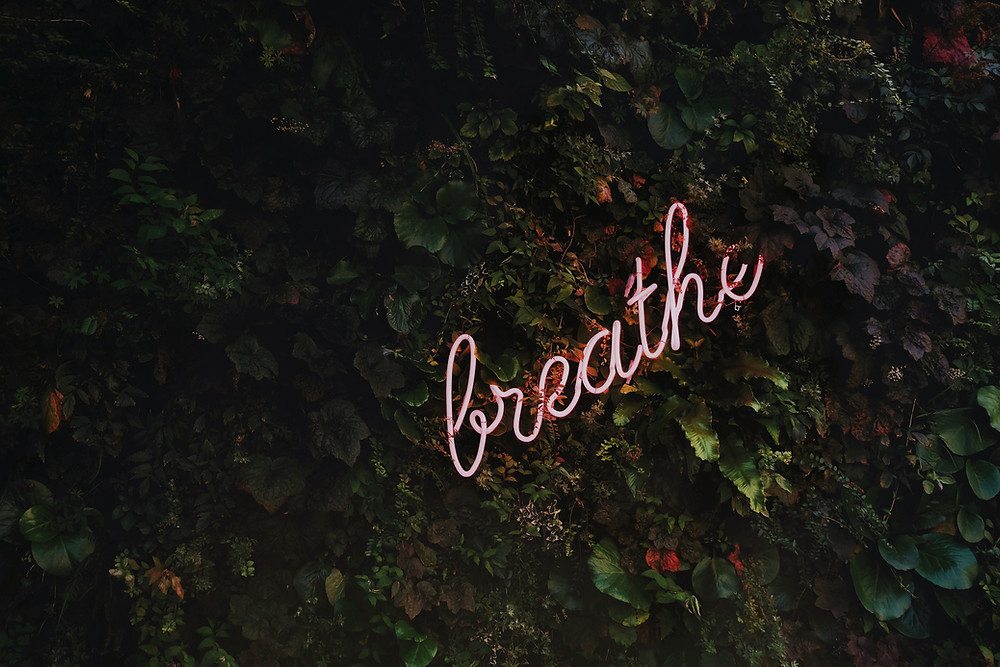 picture of neon sign reading breathe in greenery