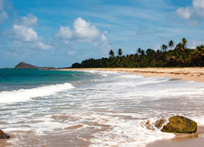 COVID-19 - Grenada Entry Requirments