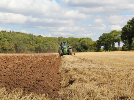 Wealth through Super: Not betting it all on the farm...